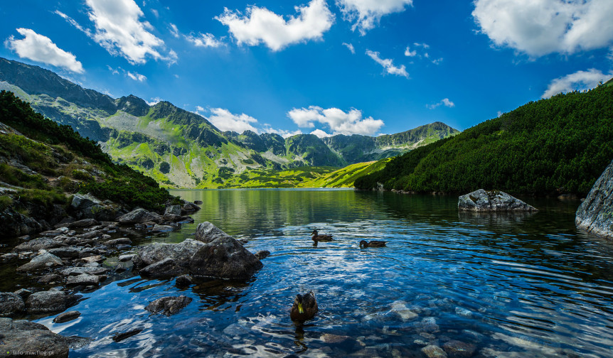 dolina pięciu stawów wycieczka